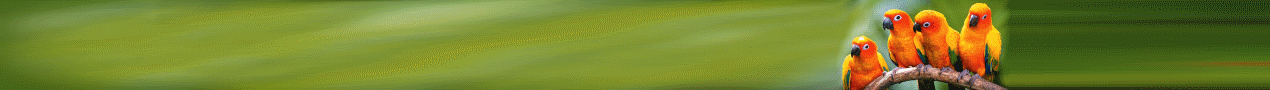 banner3.png.ae5e11b186fd8dfe5bd550a72d4d1727.png