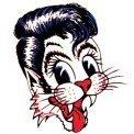thestraycat