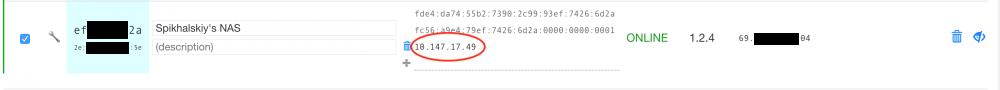 zerotier_panel.thumb.png.c54ba38ceb4a95f5459e41188272bf1b.png