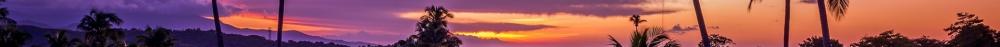 Purple Sunset.png