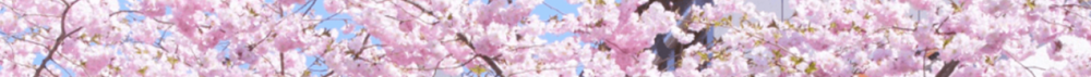 blossom1.png