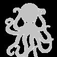 OctopusVPS